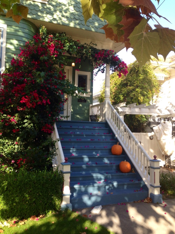 Image: Alameda Autumn (Free Blog Pictures)